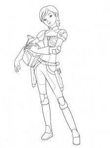 sabine wren coloring page