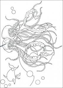 da colorare SharktaleErnie e Bernie, la medusa