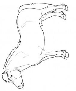 målarbok shetland ponny