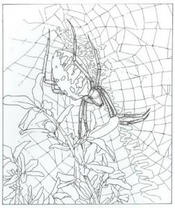 kleurplaat spin