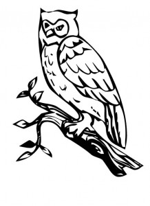coloring page Owls (4)