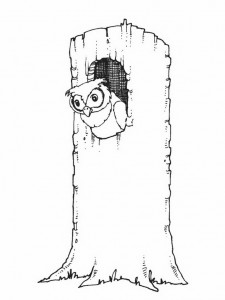 coloring page Owls (5)