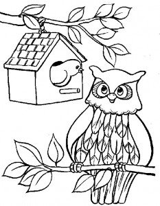 coloring page Owls (6)