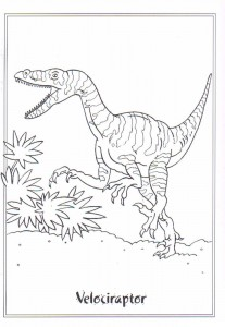 coloring page Velociraptor