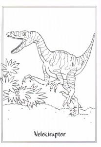 målarbok Velociraptor