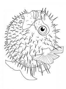 kleurplaat Vissen (17)