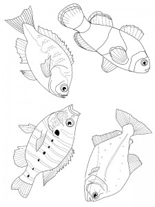 coloring page Pisces (20)