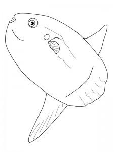 kleurplaat Vissen (28)