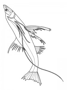kleurplaat Vissen (3)