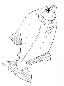 coloring page Pisces (42)