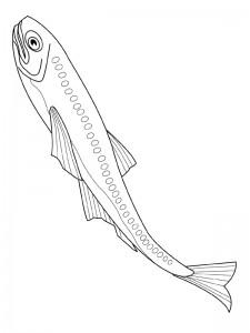 kleurplaat Vissen (6)