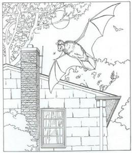 fladdermus målarbok