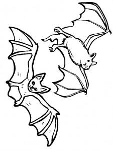 kleurplaat Vleermuizen (10)