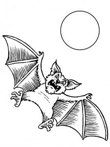 kleurplaat Vleermuizen (11)