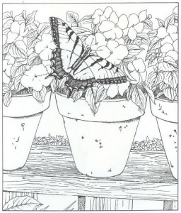 coloring page butterfly (2)