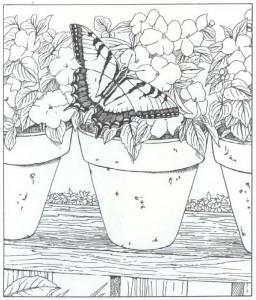 kleurplaat vlinder (2)