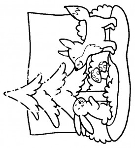 kleurplaat Vossen (11)