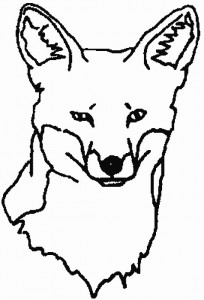 coloring page Foxes (3)