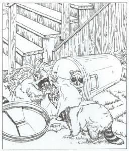 målarbok tvättbjörnar (1)
