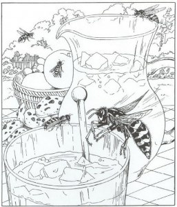 coloring page wasps (1)