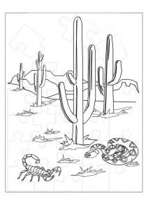 kleurplaat Woestijn
