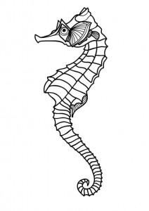 pagina da colorare Cavallucci marini (9)
