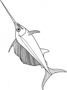kleurplaat Zwaardvis (5)